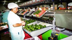 ADEX: Lambayeque resalta por ser una gran región agroindustrial