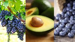 Agroexportaciones peruanas crecieron 13.1% en el primer trimestre del 2021